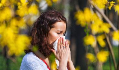 Actualité allergies du printemps